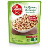 Céréal Bio Blé quinoa riz rouge  Maxi doy - 410g