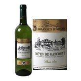 Terrasses d'Autan Vin blanc sec Terrasses d'Autan Côtes de Gascogne IGP - 75cl
